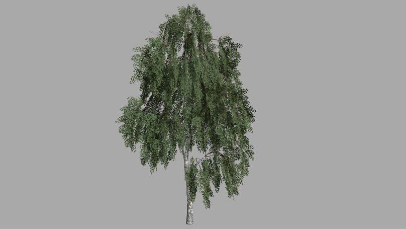 Мод Birch Tree Prefab v 1.0 для Farming Simulator 2019