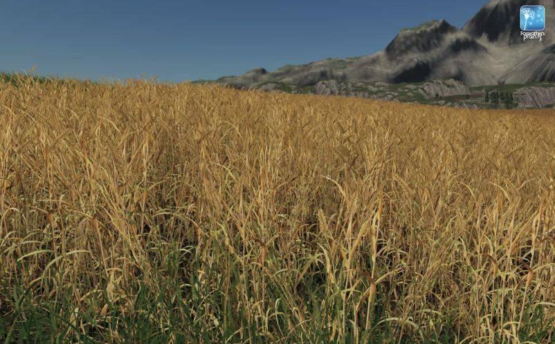 Мод Текстуры Ячменя и Пшеницы Forgotten Plants – Wheat / Barley v 1.1 для Farming Simulator 2019