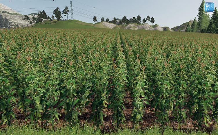 Мод Forgotten Plants - Maize v 1.0 для Farming Simulator 2019
