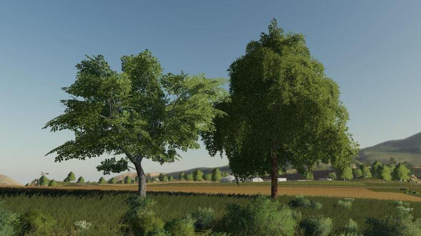 Мод Деревья More Tree v 1.0 для Farming Simulator 2019